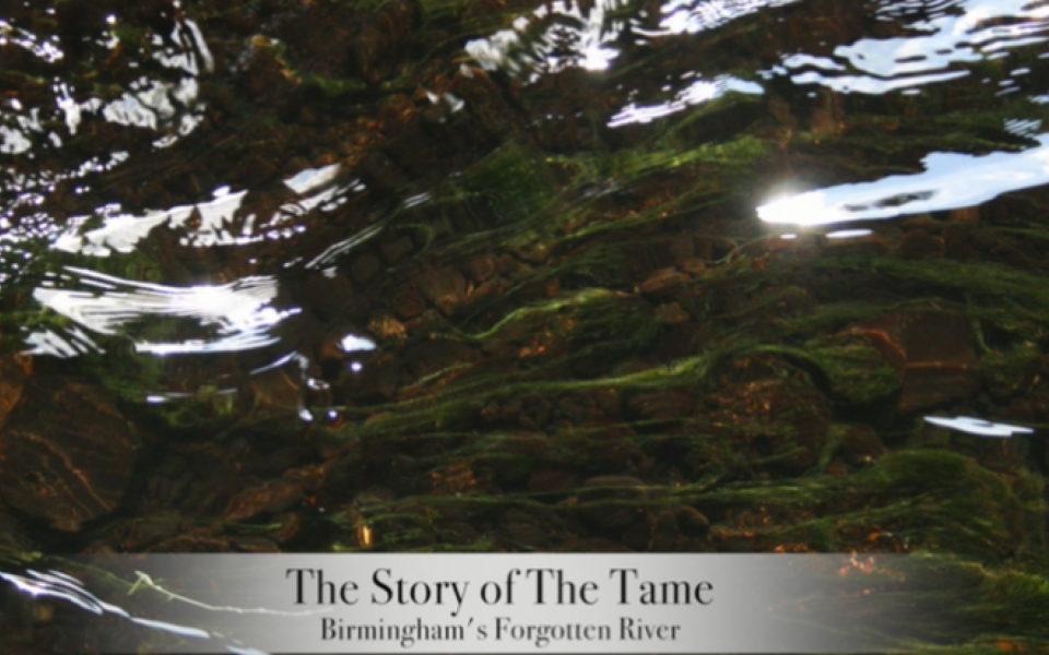 The story of the River Tame